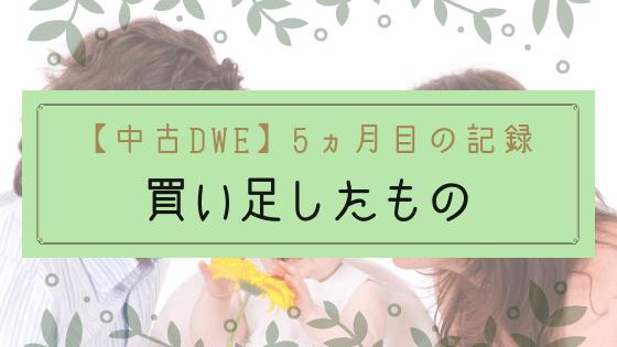 【ブログ】1歳中古DWEの記録5ヵ月目