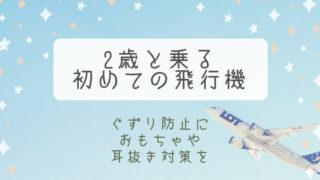 【ブログ】2歳の子供と飛行機